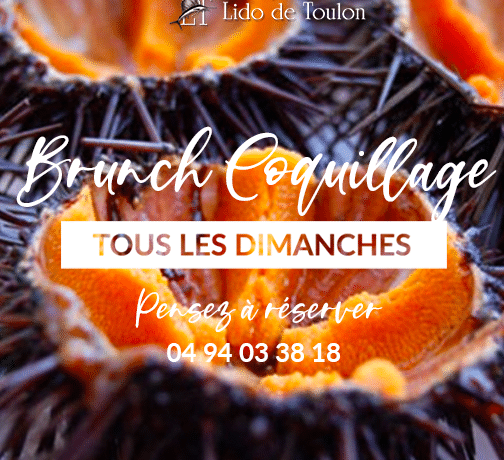 Fly-Brunch-coquillage-Toulon-2020
