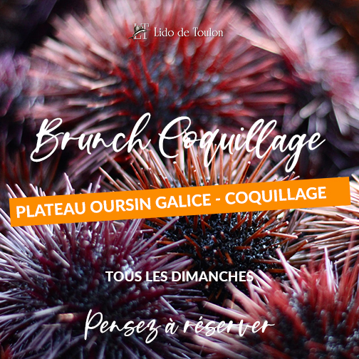 Brunch Oursin-Coquillage Toulon